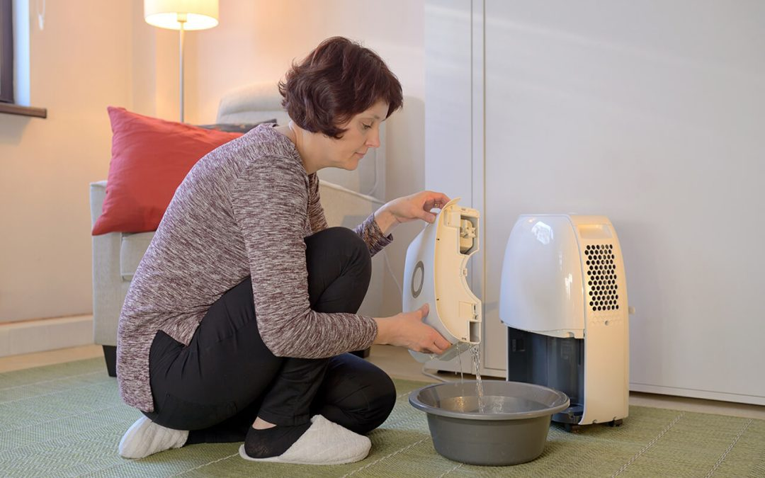 8 Steps to Improve Indoor Air Quality at Home